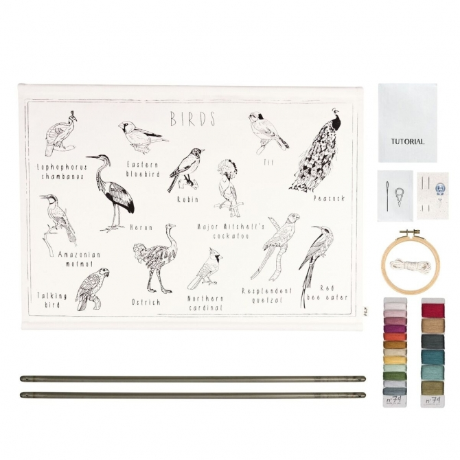 Numero 74 School Poster Kit Birds