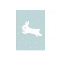 Plakat White Rabbit