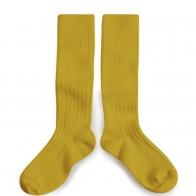 Podkolanówki Kneesocks CROCODILE yellow żółte